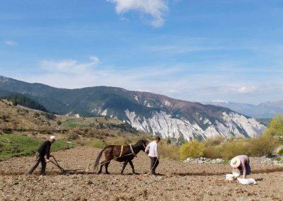 Farming in Dibër
